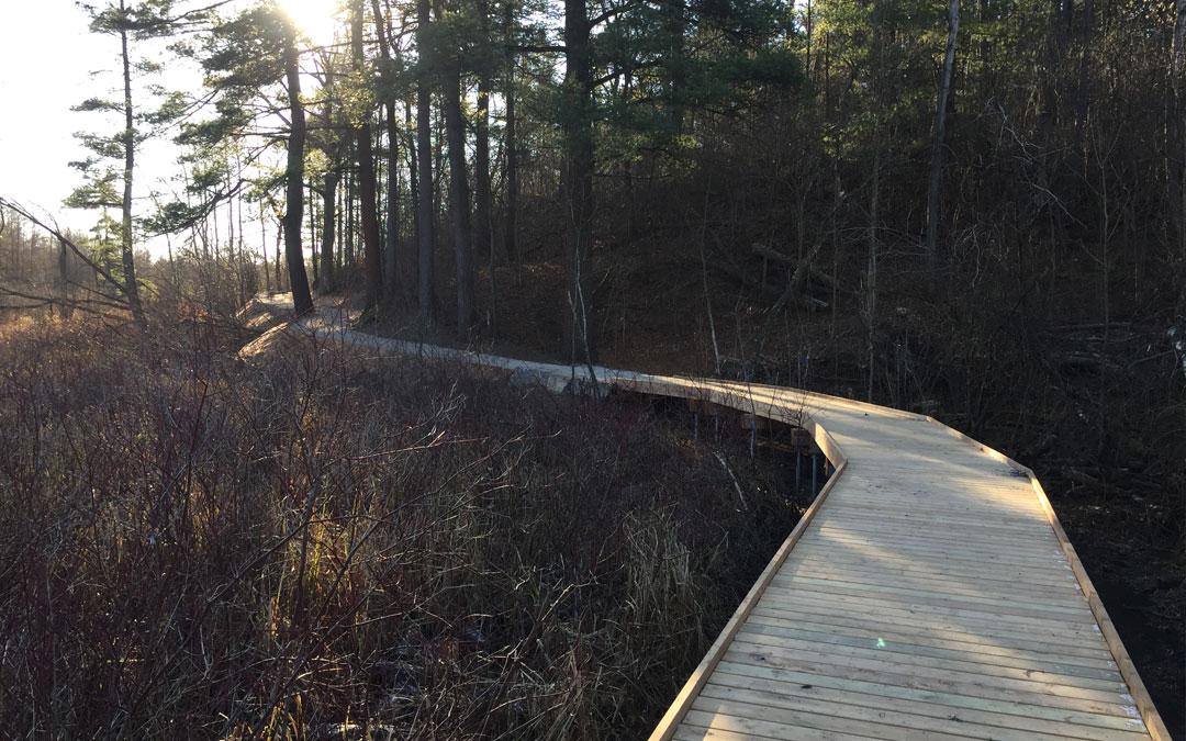 boardwalk-replacement-north-dumfries
