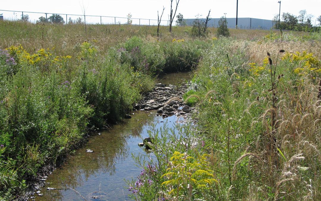 Appleby Creek