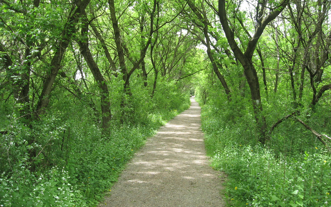 Wilmot Trails Master Plan: Implementation Plan